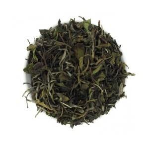 Thé blanc Baï Mu Tan blanc